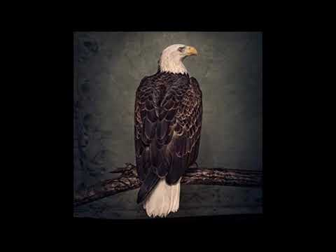 Clutch - Emily Dickinson - 2018 New song