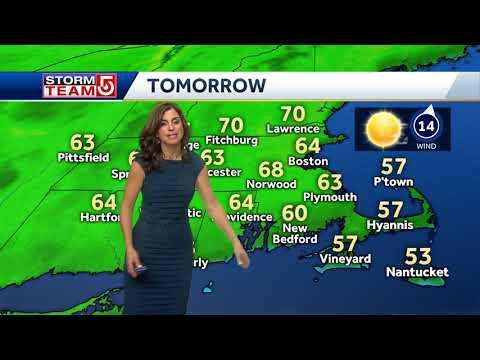 Video: Sunny, bright spring day