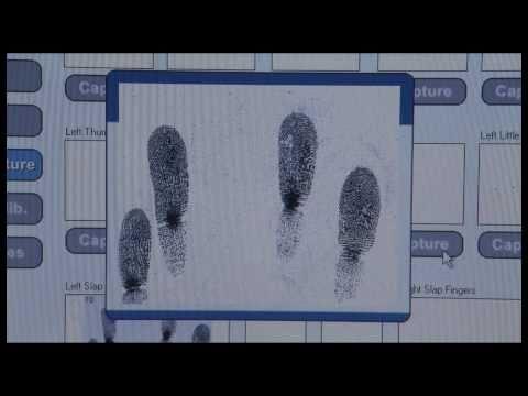 hqdefault - Ce que disent les empreintes digitales: Quand les empreintes se forment-elles?