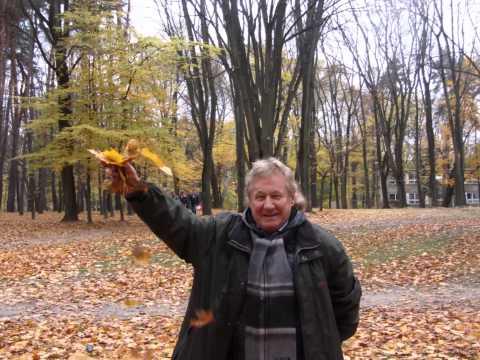 247 - ŻÓŁTY LIŚC - 1966r. / 71 [OFFICIAL FILM - 2013 R.] Autor - Janusz Laskowski