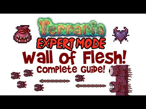 Terraria Wall Of Flesh Expert Mode Guide (& Normal Mode Too! Drops, Spawning, Demon Heart & More!)