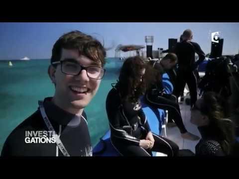 INVESTIGATIONS - Nouvelle Calédonie, un rêve d'île - France Ô