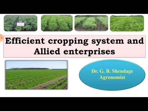 Lect. No. 7 Efficient Cropping System & Allied Enterprises
