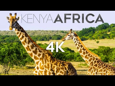 KENYA AFRICA IN 4K (ULTRA HD)