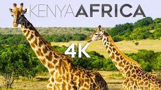 KENYA AFRICA IN 4K (ULTRA HD)