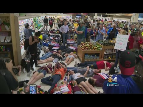 """Publix Suspends Political Contributions Amid Protester """"Die-in"""""""