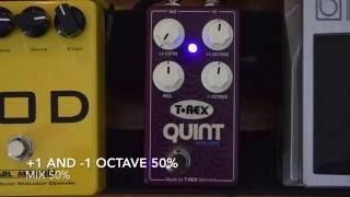 T-REX QUINT MACHINE SOUNDCHECK