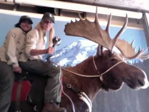 32 Kate and Bridget   Yellowstone Moose Ride