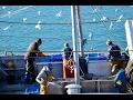 Los usuarios del mar reciben información sobre la Red Natura 2000 marina
