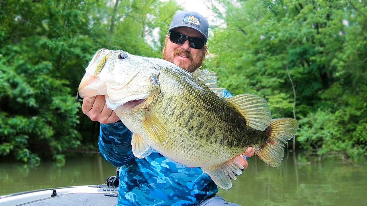 Frog Fishing And Topwater On Lake Chickamauga Big Bass Caught Youtube