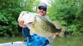 Frog Fishing And Topwater On Lake Chickamauga - Big Bass Caught!