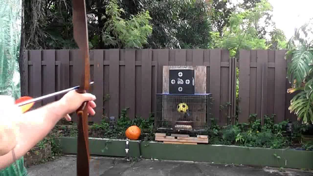 Shooting A Ben Pearson Cougar Recurve 30 At 28 Youtube