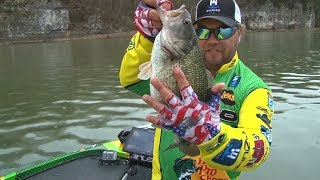 My Biggest Spotted Bass ever on the Tennessee River Chain
