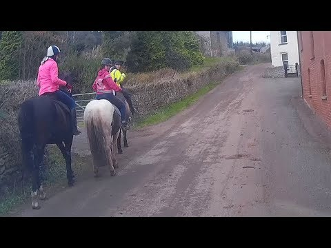 An example of inconsiderate horse riders (Kennford)