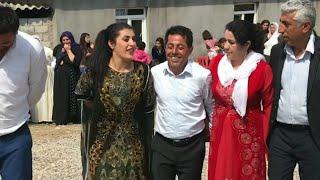 #govend #halay tayyan kerevan aşireti düğünler  xezaye düğün