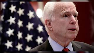 John McCain Thinks Trump More Interested in Making Money Than Serving Country