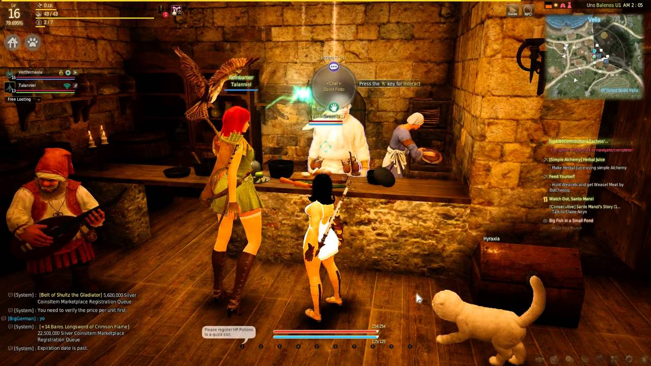 Black Desert Online: Playing as a Group