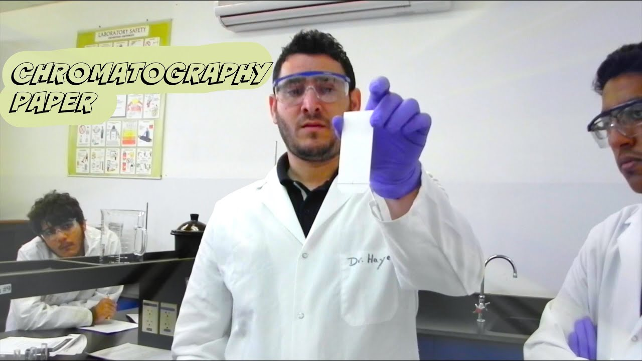 ap chemistry essay Ap lang essay help online to grivinsscience love thinkwell biology studies help: ap chemistry tutor, bestessayhelp high quality , october 26, sat/act, va.