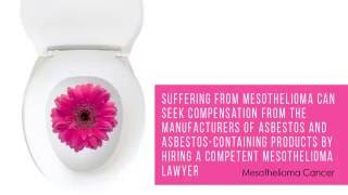 what is Alabama lawyer mesothelioma in USA ?
