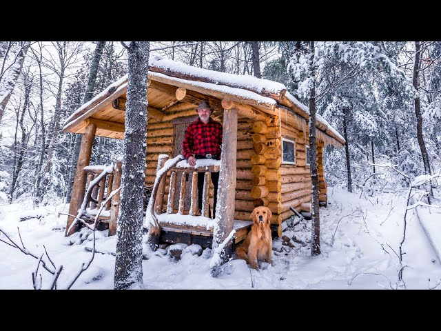 Log Cabin TIME LAPSE   SAUNA Full Build by One Man in the Forest