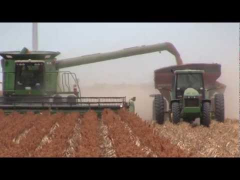 2012 South Texas Grain Sorghum Harvest