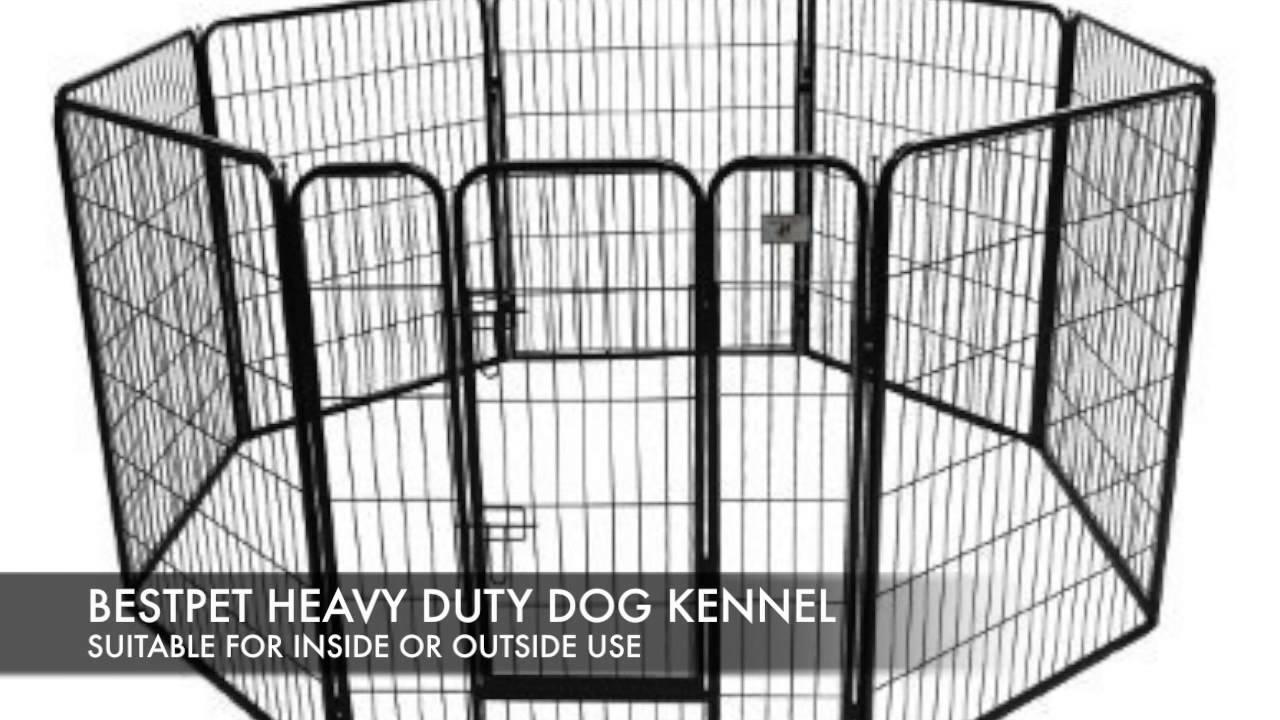 what are the best outdoor dog kennels for sale