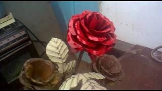 Пакраска ковная роза Ирисбек