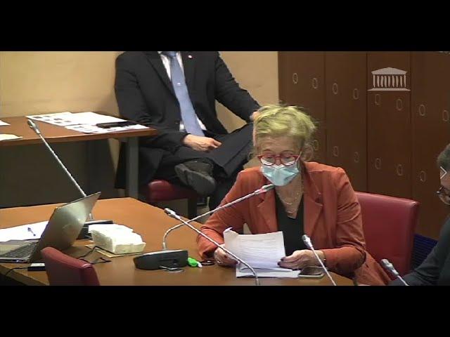 Audition de Mme Élisabeth Borne, Ministre du Travail, de l'Emploi et de l'Insertion.