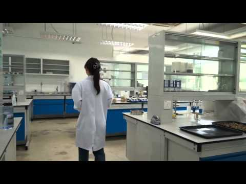 Study at the Best Universities in Malaysia - UCSI University Engineering Degrees