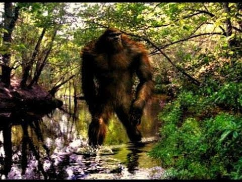 World Bigfoot Radio #45, Pt.2 ~ Bigfoot Upper Midwest/ reports over 200 years/Big D