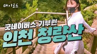 인천 청량산으로 간 굿네이버스 기부런 (청량산 후기)