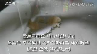 ☆추석맞이 송편철아따☆…