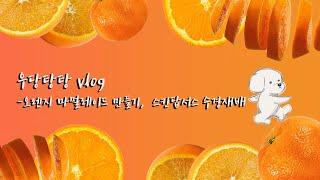 [vlog] 오렌지 마멀레이드 만들기, 스킨답서스 수경…