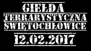 Giełda terrarystyczna - Świętochłowice 12.02.2017