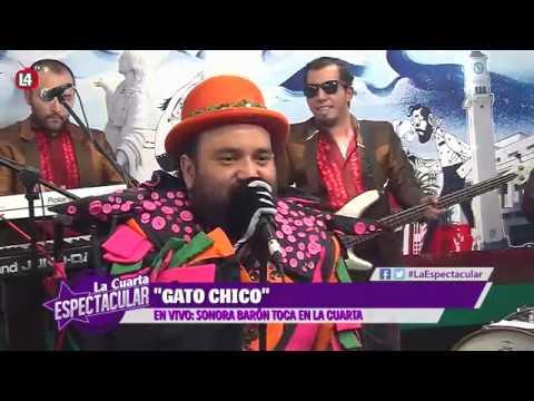 Sonora Baron - Gato Chico [EN VIVO] La Cuarta Cibernética - YouTube