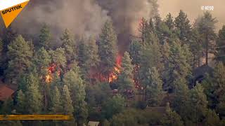 Pożary lasów w USA