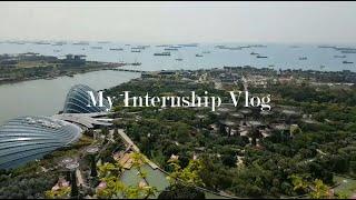 [싱가포르 일상] 국제기구 인턴 브이로그 Interns…