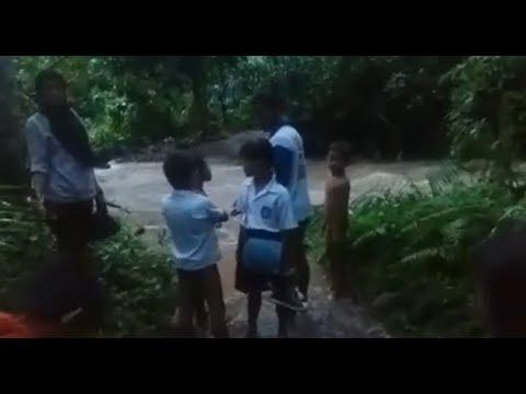 Miris..!! Beredar Video Pelajar di Padang Cermin Harus Menyeberangi Sungai Deras Tanpa Jembatan Menuju Sekolah