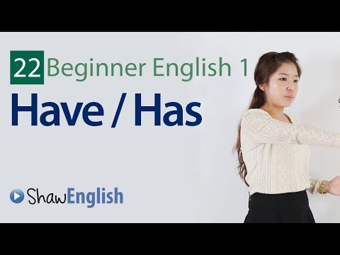 English Grammar: Have / Has