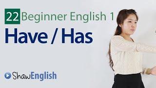 English Grammar: Have / Has