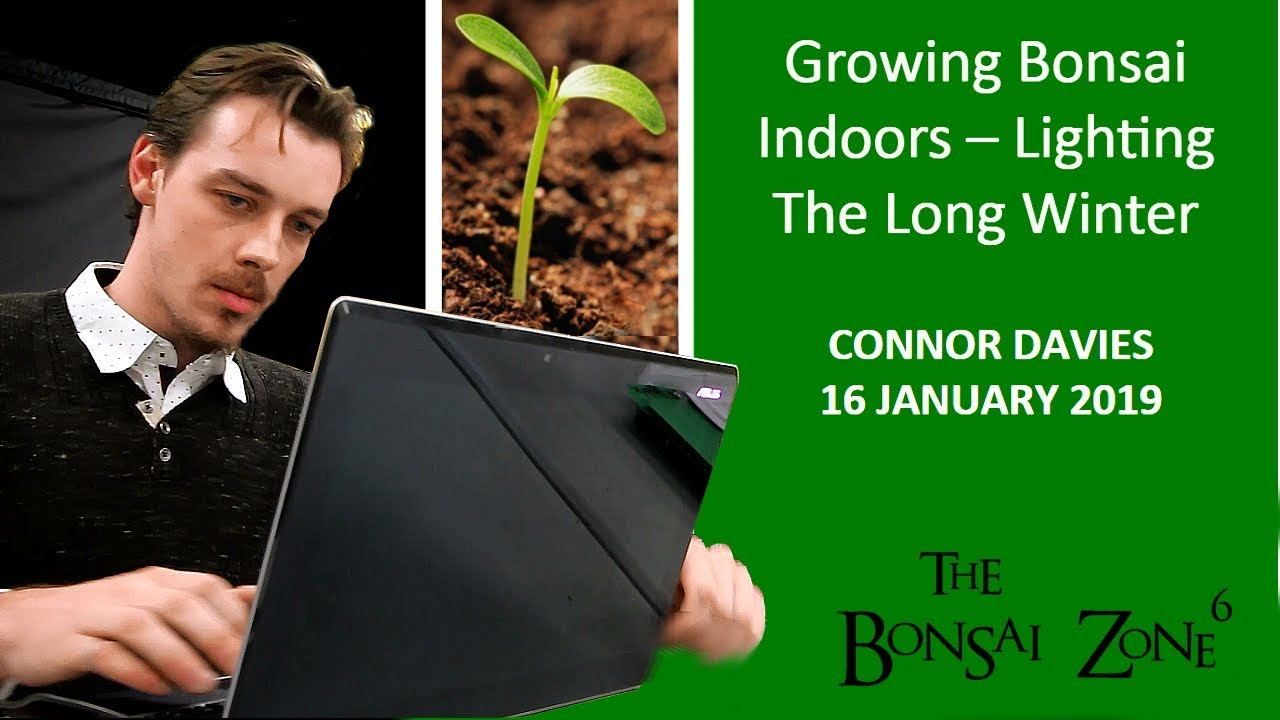 a guide to indoor lighting for plants the bonsai zone jan 2019