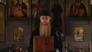 о. Арсеније - Христово васкрсење и центрифугално друштво (Беч 2017 )