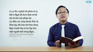 VHOPE | Ê-phê-sô 2:15 - Chúng Ta Đã Trở Nên Người Mới | Đèn Soi Bước 32