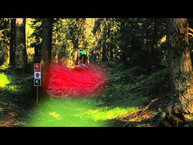 GORILLA Bike - Level 1: Schalten (6/22) D