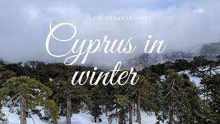 Cyprus 2020 Кипр зимой