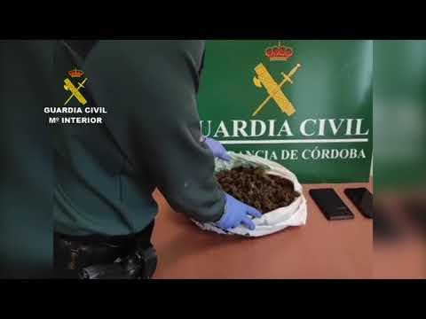 Dos detenidos en Montilla como supuestos autores de un delito de tráfico de drogas