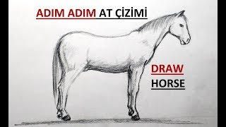 Step by step HORSE drawing / Easy draw a horse / Carcoal drawing horse / How to draw a horse?