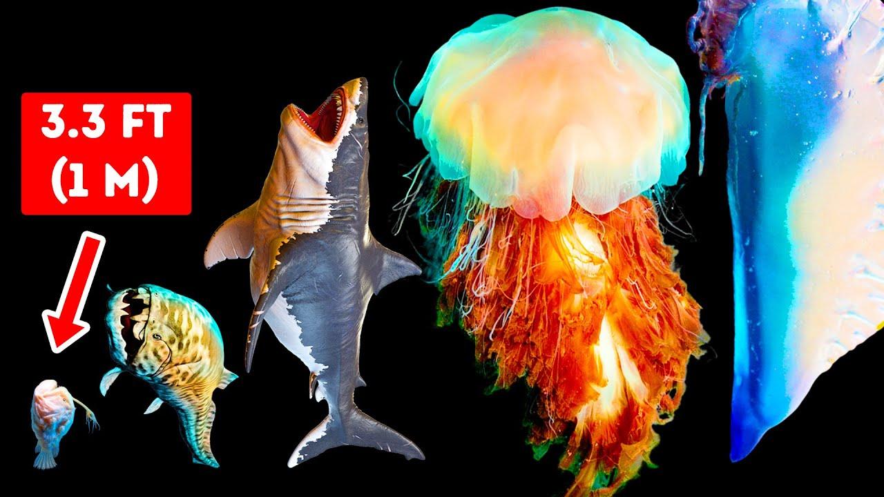 Download Makhluk Laut Berbahaya yang Lebih Besar daripada Megalodon