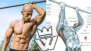 Bodyweight WORKOUT EXERCISES | PUSH Ups, PULL Ups, SQUATS, ABS, Arms & Shoulder Training
