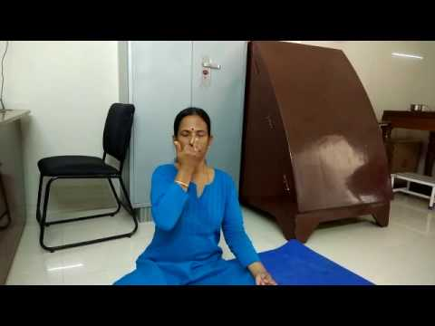 Jamuna Elumalai   Best Reliable Senior Yoga Teacher  Gunam Hospital Hosur www imwellyoga com